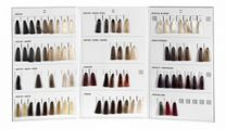Super Brillant Color Farbberatungskarte gross 2014 für Endkunden