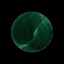 Directions spring green Haartönung Inhalt 89ml Anwendung: Haar mit einem neutralen Shampoo reinigen DirectionsTotal Cleanse Shampooist hierfür die erste Wahl. Anschliessend das Haar mit einem Handtuch frotiere