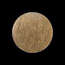 Nouvelle Haarfarbe 9.1 licht aschblond