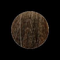 Nouvelle Haarfarbe 9.13 licht aschblond gold