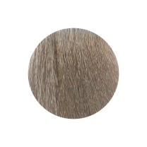 Nouvelle Haarfarbe 9.71 alabaster
