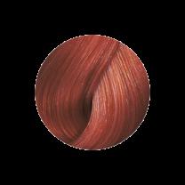 Super Brillant Color Haarfarbe 6-4k