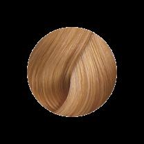 Super Brillant Color Haarfarbe 8-03ng
