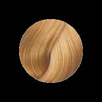 Super Brillant Color Haarfarbe 9-03ng