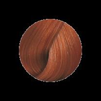 Koleston Vibrant Reds 6/34 dunkelblond gold rot